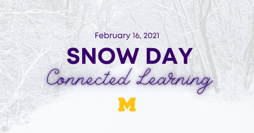 Connected Learning - Snow Day