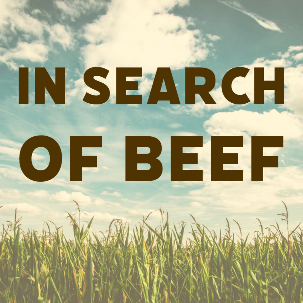 In search of beef.